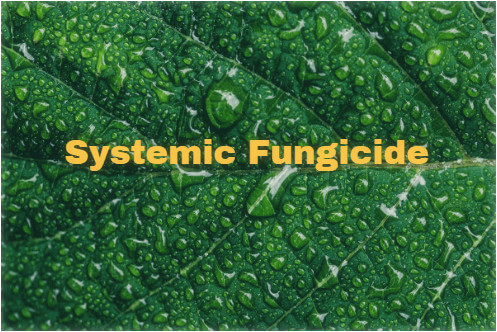 systemic fungicide