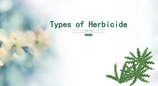 Types of Herbicide